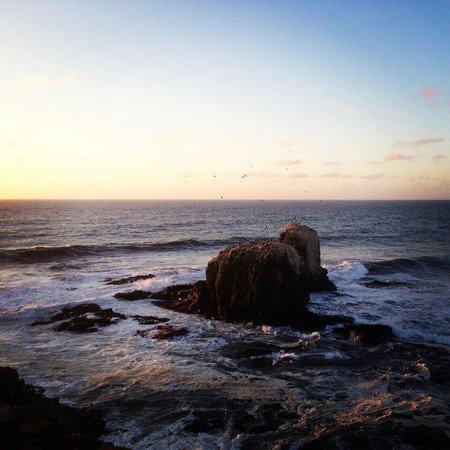 Hostal Pichilemu Casa Verde: Punta de Lobos