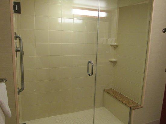 Courtyard by Marriott Miami Airport : Bathroom Shower