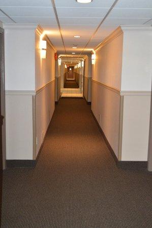 Super 8 Vernon BC: Hallway