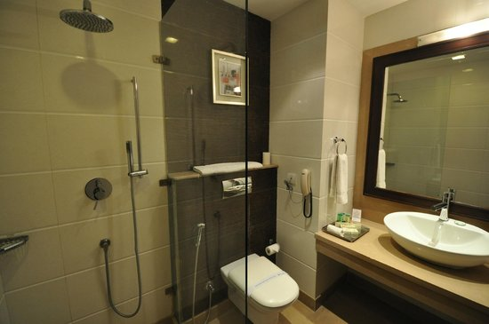 Bathroom, room 219, Parkland Grand Hotel, Delhi, 28 Dec 2012