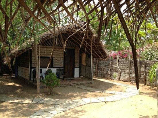Stardust Beach Hotel : Double cabana