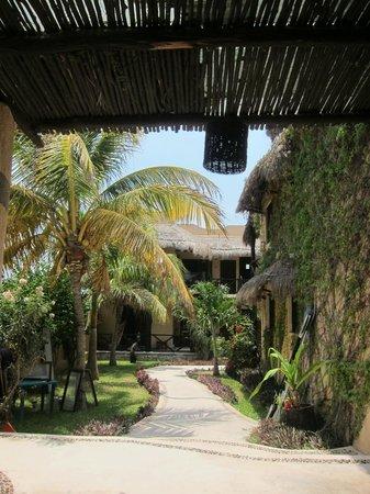 Luna de Plata · Hotel: The leafy green grounds