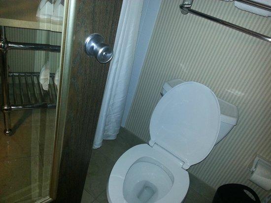 Sheraton Madison Hotel: bathroom