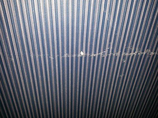 Sheraton Madison Hotel: cuts on the wall