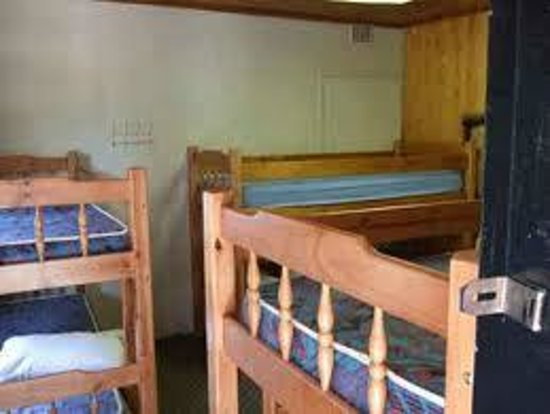Mufasa Backpackers: Beds