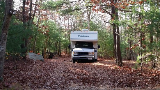 Shawme-Crowell State Forest: Nice large site