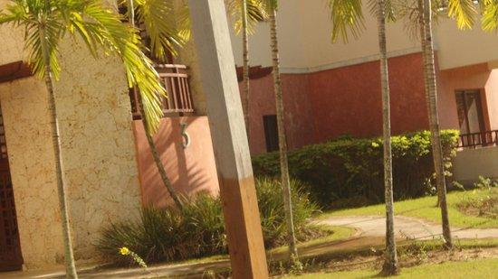 VIK Hotel Arena Blanca: alrededores