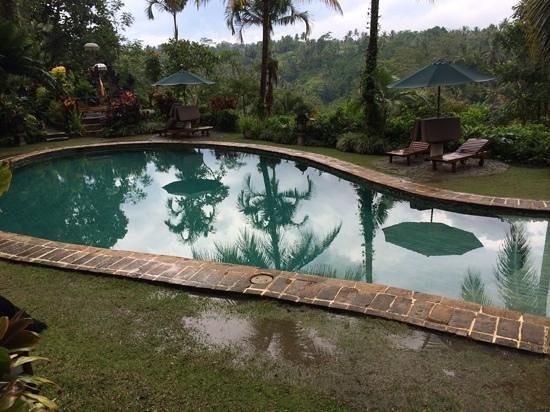 Alam Sari: Pool nach Gewitter