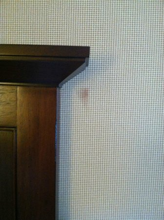 Sheraton Harrisburg-Hershey : Stain on the wall near the headboard!