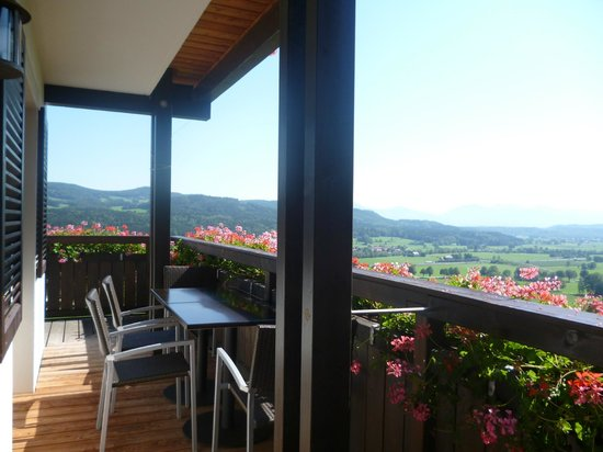 Hölbinger Alm: Balcony