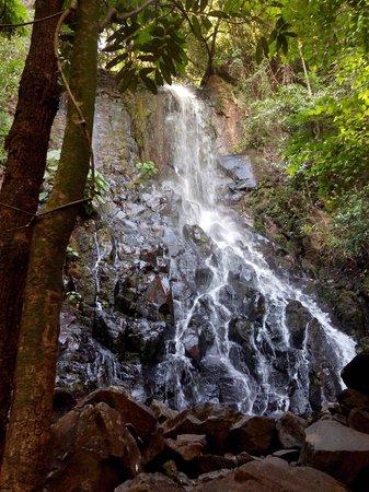 Martelo Waterfall: Cacheira da primavera