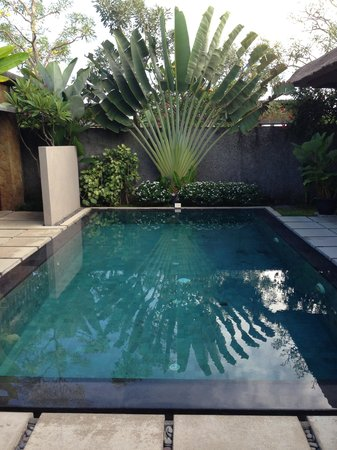 The One Boutique Villa: Swimming Pool