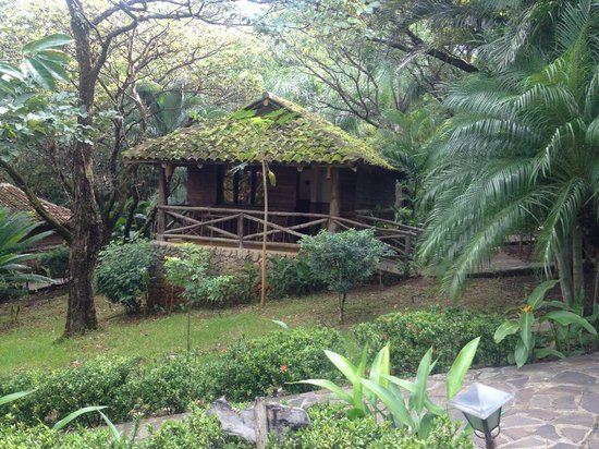 El Sabanero Eco Lodge : our cabin