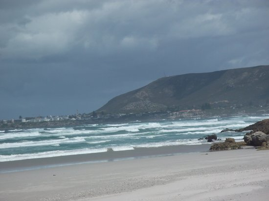 Go Cape Tours: Beach near Hermanus