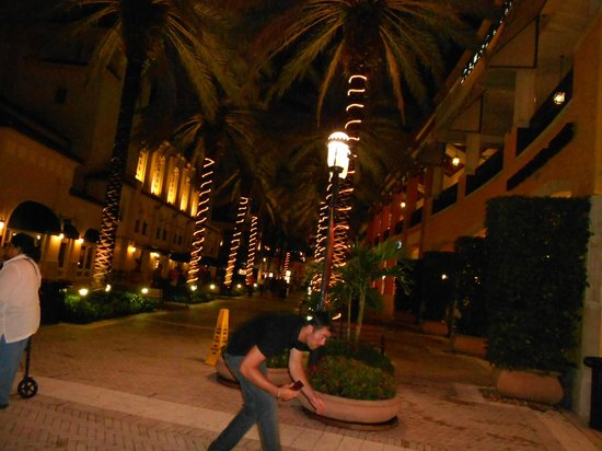 Downtown West Palm Beach: CityPlace 2