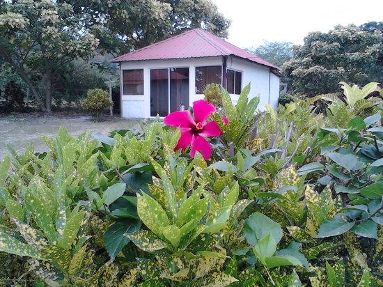 Hosteria Camare: nuestras cabañas