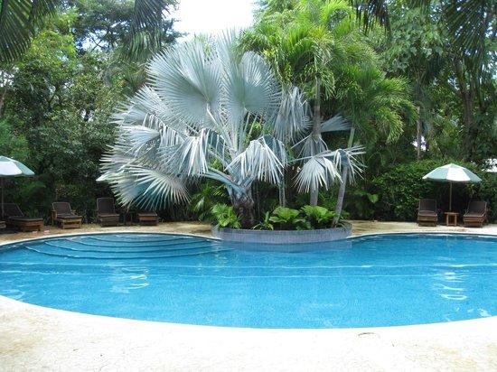 Harmony Hotel Nosara: Pool area