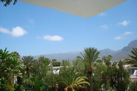 Restaurante Las Rocas: Вулкан Тейде