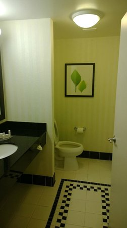 Fairfield Inn & Suites Palm Coast I-95: Bathroom