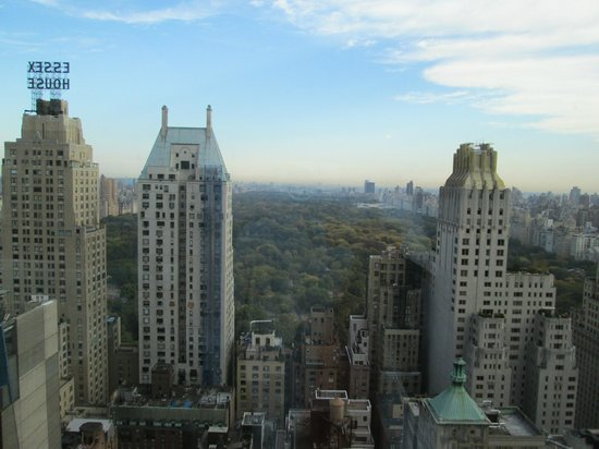Parker New York: Another view from the pool
