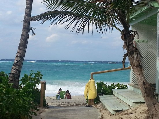 Sivananda Ashram Yoga Retreat : View down to the beach