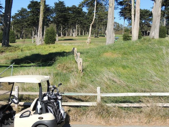 Presidio Golf Course: love the trees - they kick your ball back out in the fairway : )