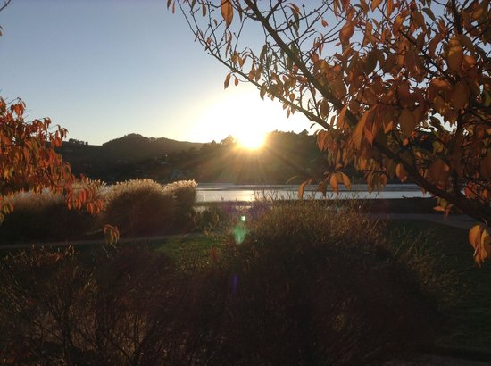 Acqua Hotel Mill Valley : Sunset view of the bay from our 1st floor patio