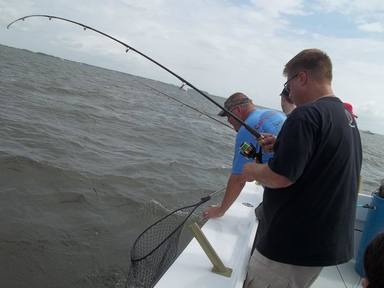 Patience Sportfishing : Got one on the line