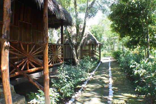 Isla Ecologica Mariana Miller Lodge: Caminos en la Isla