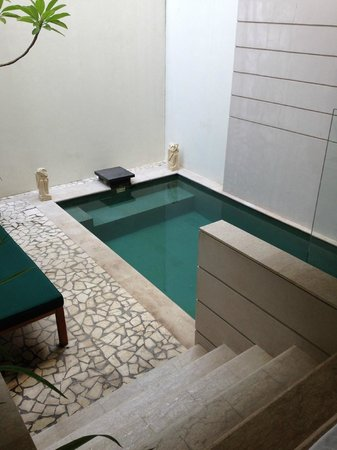 Villa Kayu Raja : pool
