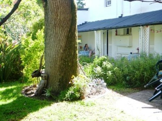 November in Ivydene Garden