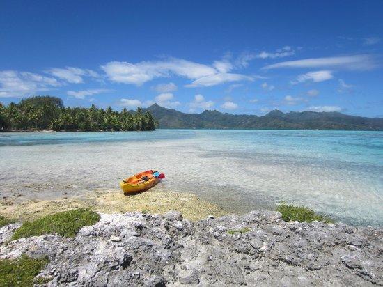 Vahine Island Resort & Spa: Kayak to neighboring motu.  Looking back at Vahine.