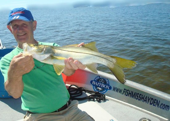 Mr mark foster of birmingham nice snook caught wading for Deep sea fishing fort myers florida