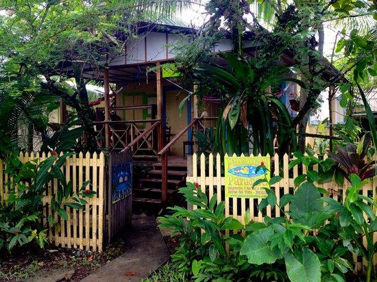 Panama's Paradise Saigoncito: pequeños detalles. grandes sorpresas.