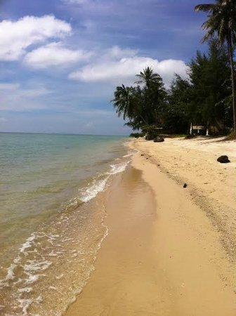 Coco Garden Resort: Strand
