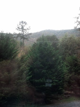 Aska Mountain Mill Bed & Breakfast: View out window