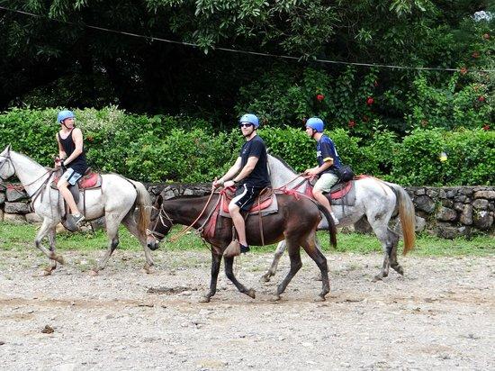 Hacienda Guachipelin: Horseback riding