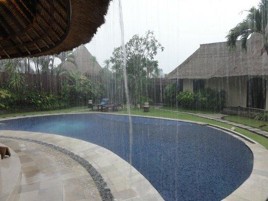 The Dusun : Rainy hour in paradise