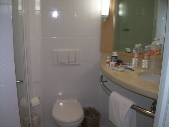 Hotel Ibis Merida: Bathroom - single room