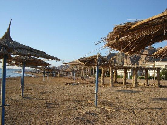 Sea Sun Hotel Dahab: Запущенный пляж