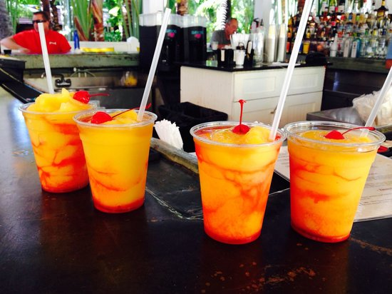 The Inn at Key West: Delicious tropical drinks!