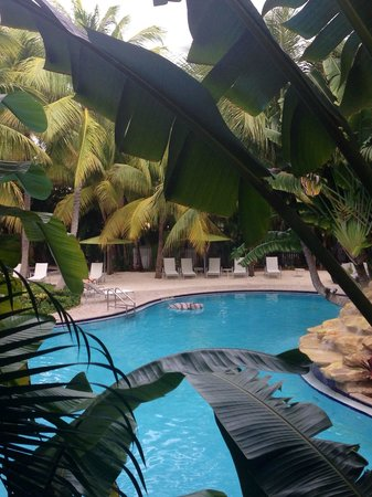 The Inn at Key West: View from poolside room.