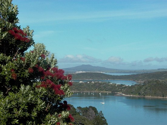 Te Whau Lodge: Stunning view from Lodge grounds