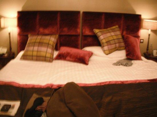 Horn of Plenty: Large Beds