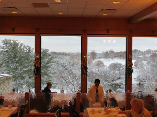 Wilson Lodge at Oglebay Resort & Conference Center : View from dining area.