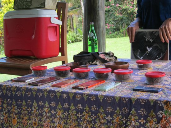 Princeville Botanical Gardens - Tours: chocolate tasting