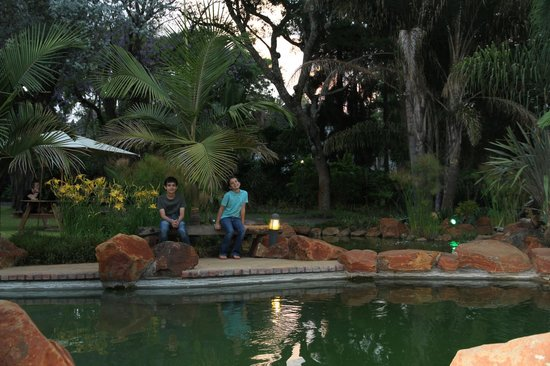 Casa Kadiki Guest House: Our kids enjoying the pond...