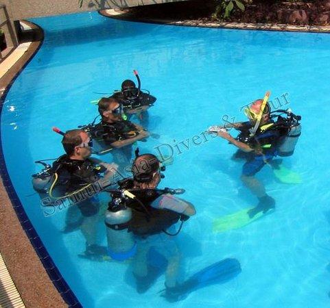 Samui Asia Divers : Tauchen koh samui tauchschule tauchbasis tauchcenter