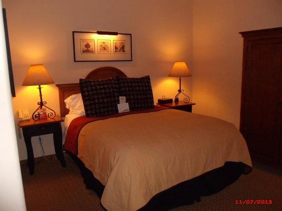 Old Santa Fe Inn: Queen bed