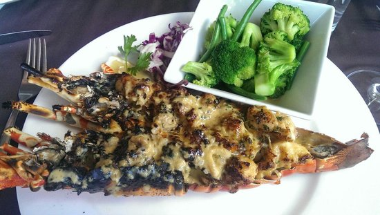 Seven Seafood & Grill : Lobster Thermador